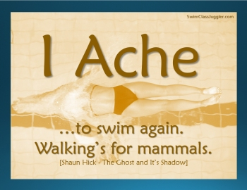 Swim Meme - Walking's for Mammals